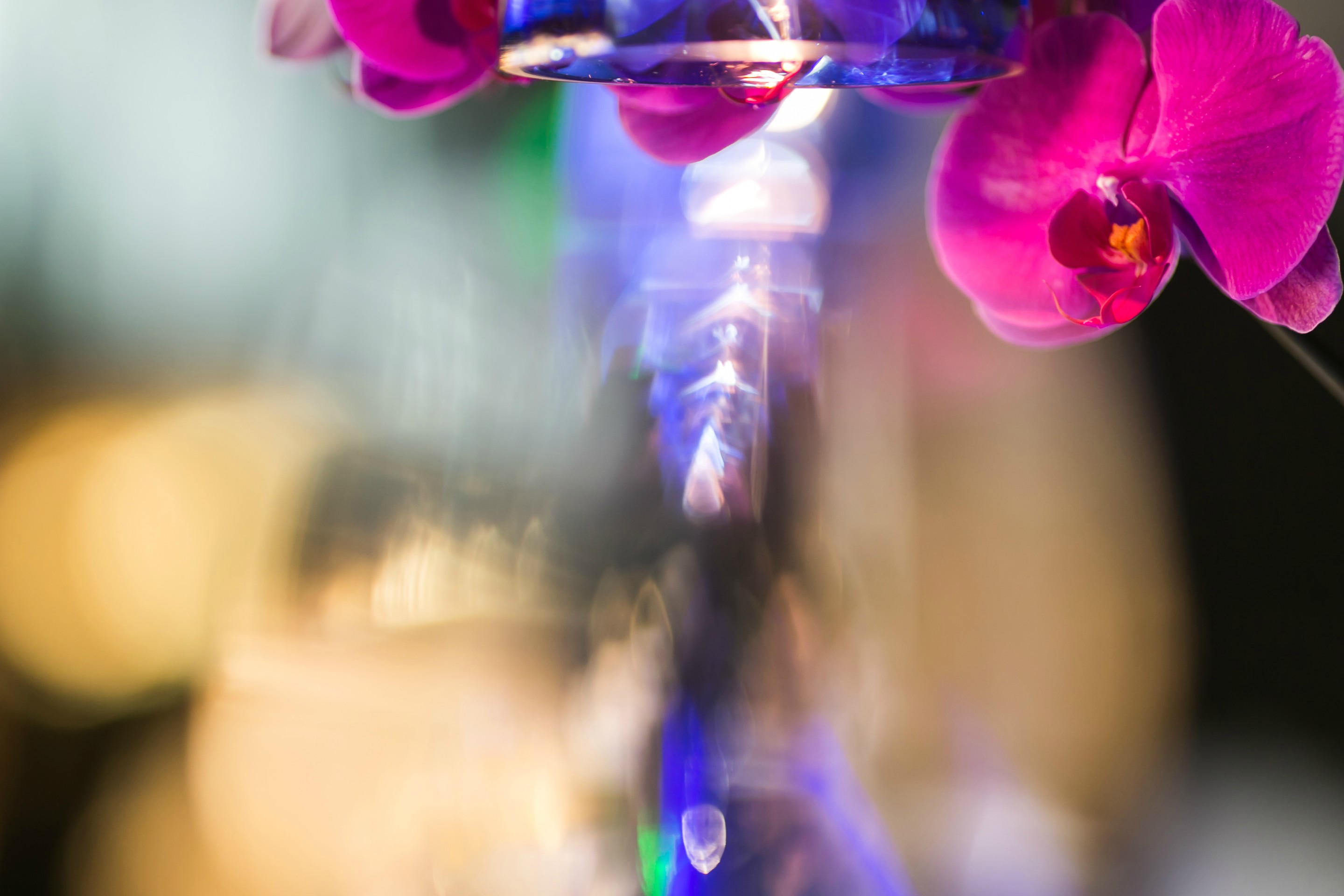 hakkasan-bokeh-effect-over-flowers