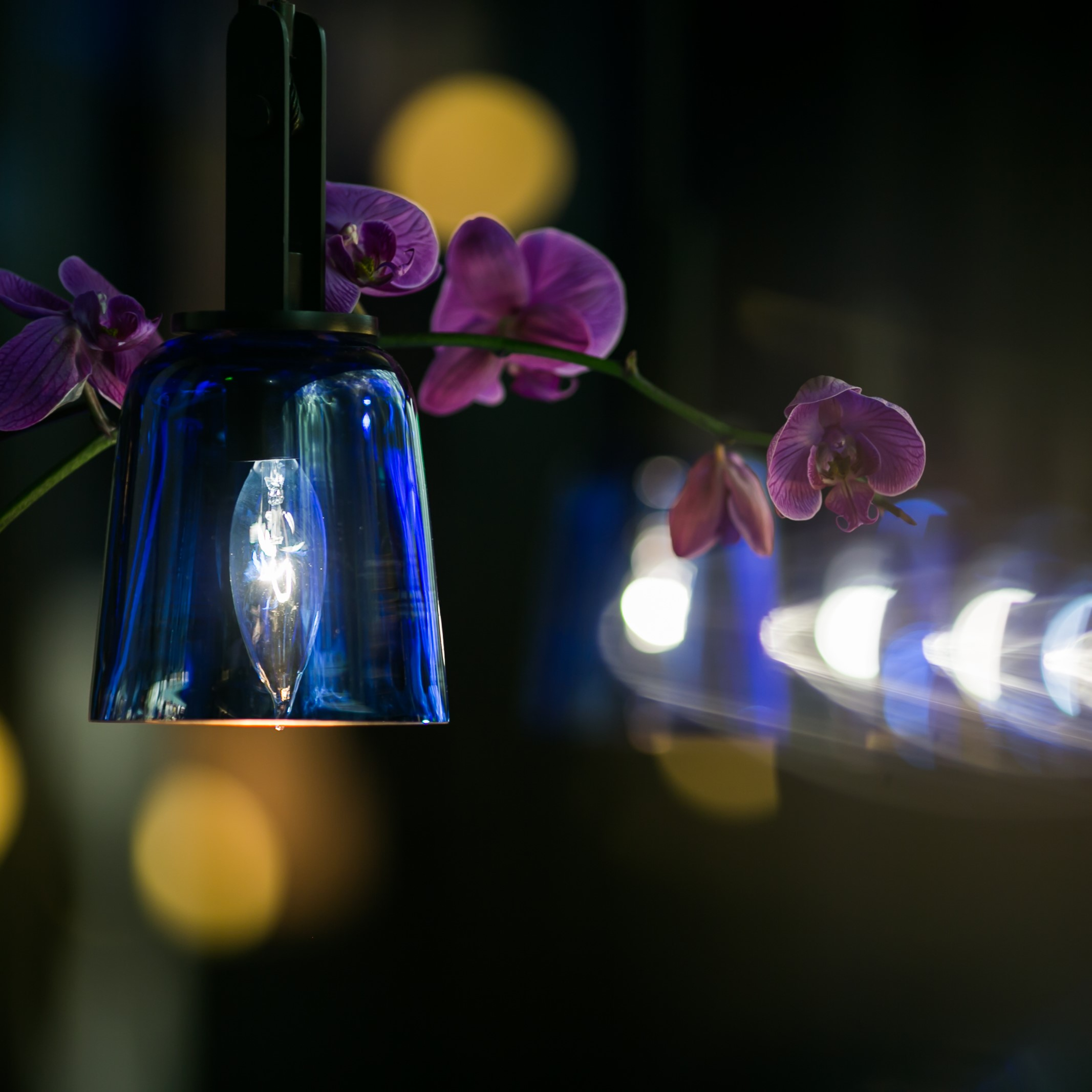 Lights with bokeh and pink orchids at Hakkasan